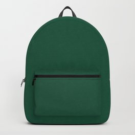 Teal colour Backpack