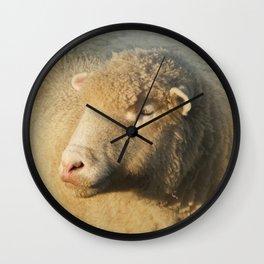Merino sheep Wall Clock