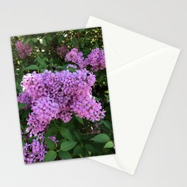 Lilac Perfume Stationery Cards