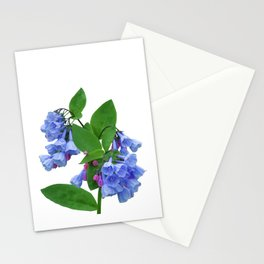Spring Bluebells Stationery Cards