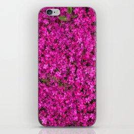 violet flowers iPhone Skin
