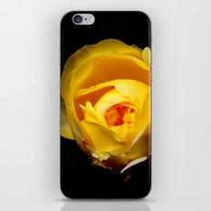 Cityscape iPhone & iPod Skin