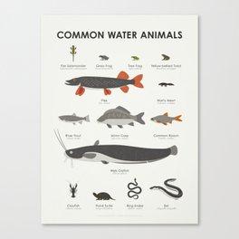 Common Water Animals Canvas Print