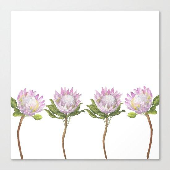 Beautiful Lotus Canvas Print