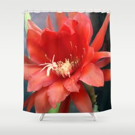 Jungle Cactus Red Shower Curtain