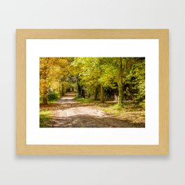 Country Laneway - Autumn Framed Art Print