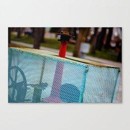 Blue & Red Canvas Print