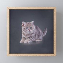 Drawing funny kitten Framed Mini Art Print