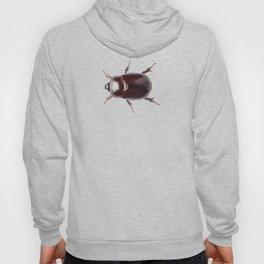 """European rhinoceros beetle female """"Oryctes nasicornis"""" species Hoody"""