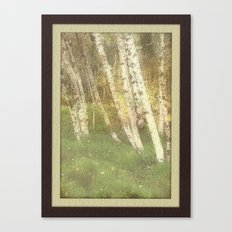 Fall Alders Canvas Print