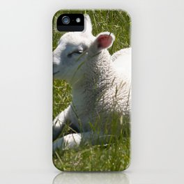 The resting lamb iPhone Case