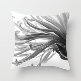 Spider Mum Black and White 2 Throw Pillow