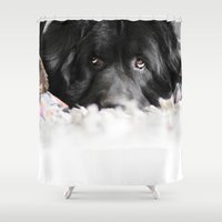 rug Shower Curtains featuring Rug Dog by Nandi Appleby Photography