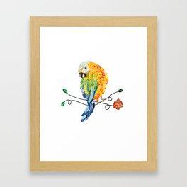 Bird of Costa Rica, hybrid macaw Framed Art Print