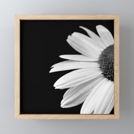 Half Daisy in Black and White Framed Mini Art Print