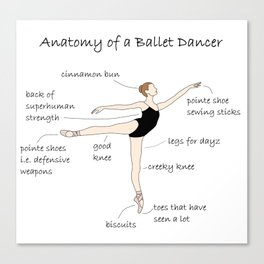 Anatomy of a Ballet Dancer Canvas Print