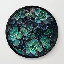 Succulent Blue Green Plants Wall Clock