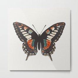 it's a butterfly Metal Print