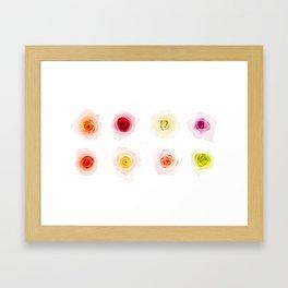 Rose Collection  Framed Art Print