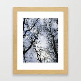Branches of trees Framed Art Print