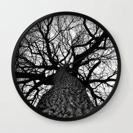 Giant Cottonwood Tree in Winter Wall Clock