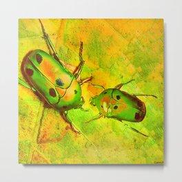 les amours des scarabées chinois Metal Print
