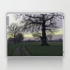 evening light... Laptop & iPad Skin