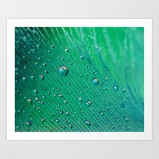 Emerald Feather Art Print