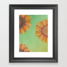 Asteraceae Framed Art Print