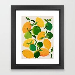 Lemons and Limes Framed Art Print