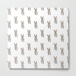 Flame Point Siamese Kitten Metal Print