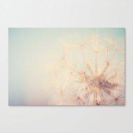 dandelion dreams .... Canvas Print