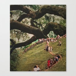 Ancient Moving Trees Canvas Print