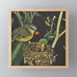 Birdie likes Framed Mini Art Print