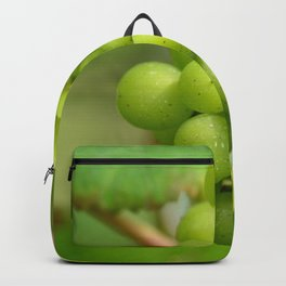 Green grapes in a Belgian vineyard Backpack
