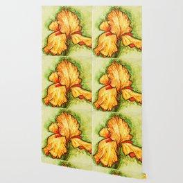 Yellow Iris By Pam Hayes Wallpaper