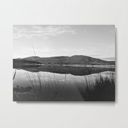 Still Morning Metal Print