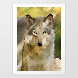 Wolf in spring sun Art Print