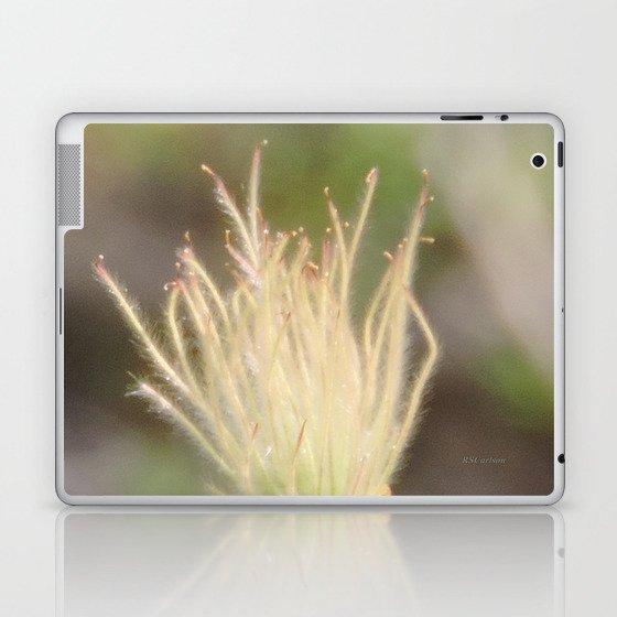 Apache Plume Laptop & iPad Skin by rscarlson