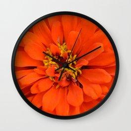 Orange Zinnia Wall Clock