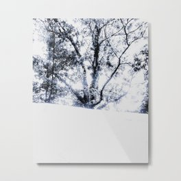 Untitled Black & White Tree Metal Print