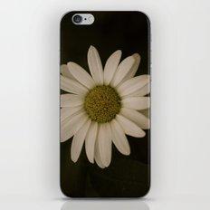 Calm. iPhone Skin