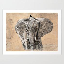 Elephant2 Art Print