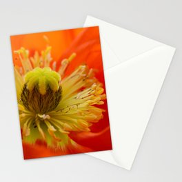 Poppy red macro 071 Stationery Cards