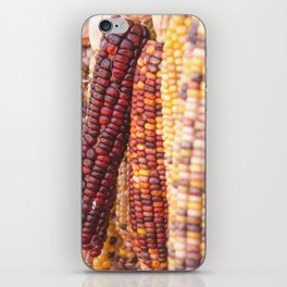 Indian corn 5 iPhone Skin