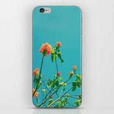 Good Morning Gorgeous iPhone & iPod Skin