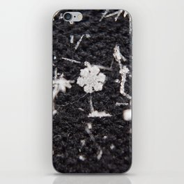 Wintery iPhone Skin
