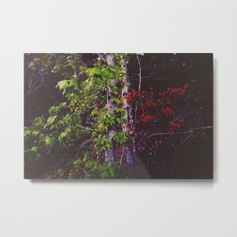 October Forest Metal Print