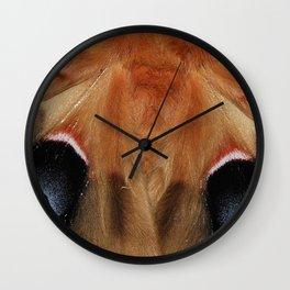Polyphemus Giant Moth - Wing Detail Wall Clock
