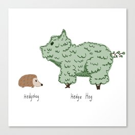Hedgehog vs. Hedge Hog Canvas Print